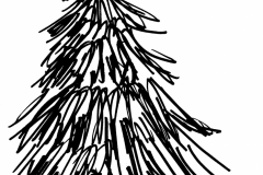 Nadelbaum
